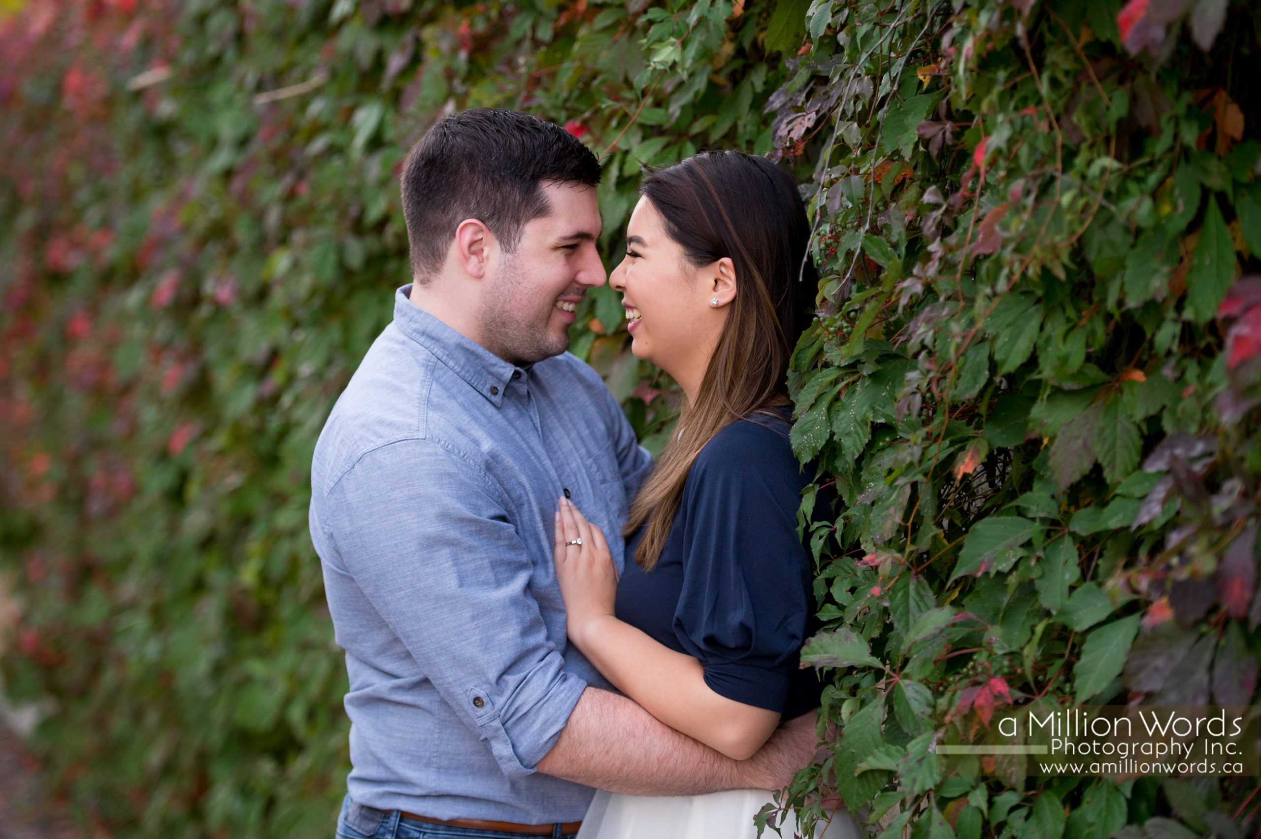 Engagement Photography Elmira