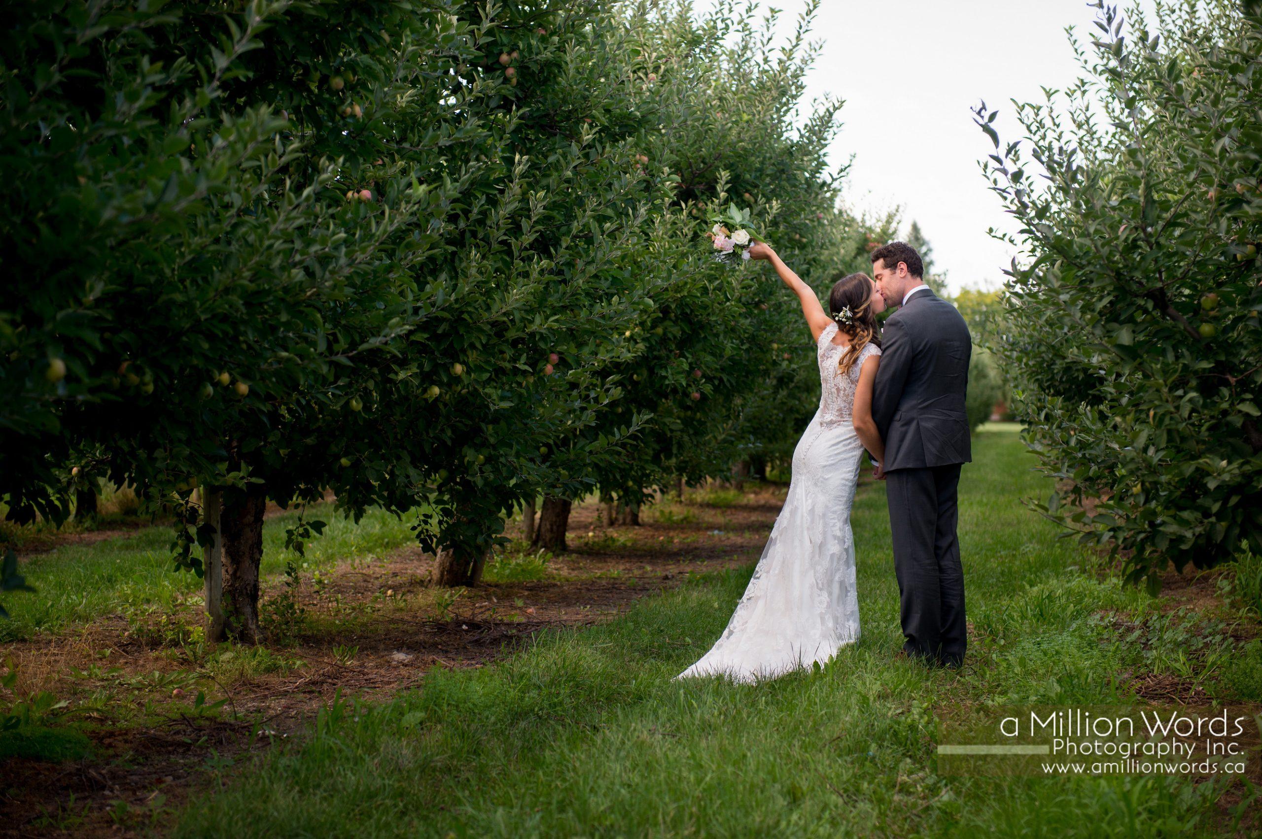 kw_wedding_photography39