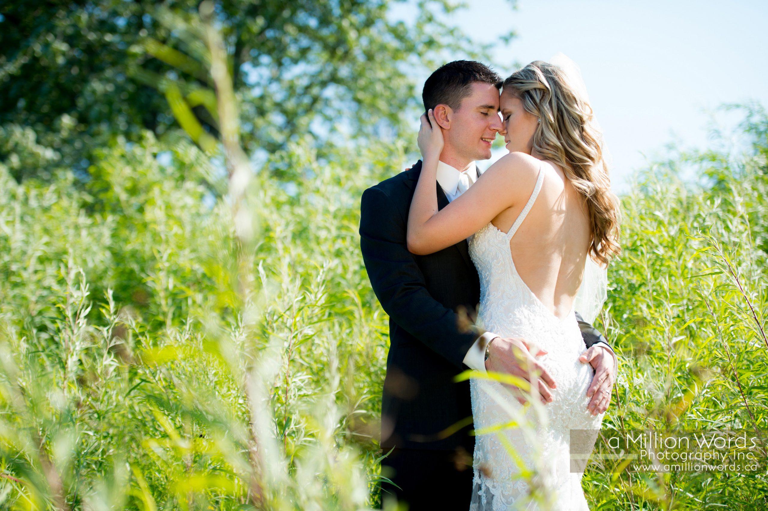 Arthur Wedding Photography